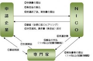 図2 中堅