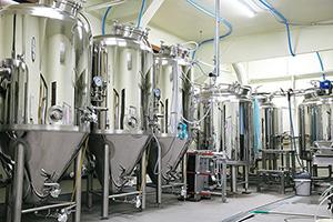 コンパクトな設備で3種類のクラフトビールを製造