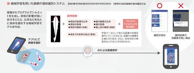 機械学習を用いた錦鯉の個体識別システム